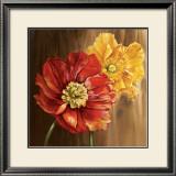 Poppies Art by Selina Werbelow