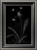 Dandelion Garden I Print by Alicia Ludwig