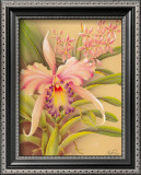 Pink Cattleya Art by  Hale Pua Studio