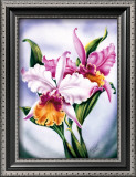 Pink Orchid Art by Ted Mundorff