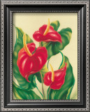 Anthurium II Prints by Ted Mundorff