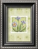 Petunias Prints by Wilma Sanchez