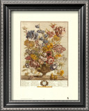 Twelve Months of Flowers, 1730, April Posters by Robert Furber