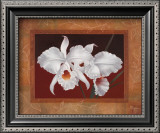 White Orchids Poster by Vivien Rhyan