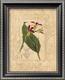 Estudio de Flores I Poster by Javier Fuentes