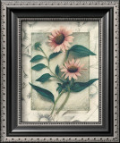 Echinacea Art by Julie Nightingale
