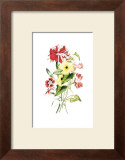 Flowers Prints by Louise Anne Twarmley