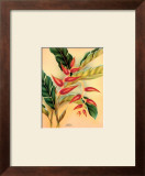 Heliconia Print by  Hale Pua Studio