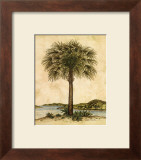 Palm Paradise II Prints by Dianne Krumel