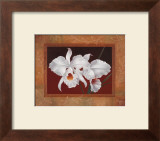 White Orchids Posters by Vivien Rhyan