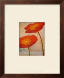Fiori Prints by Linda Maron