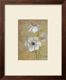 Anemones Prints by Pamela Desgrosellier