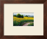 Field of Sunflowers Print by Gerhard Nesvadba