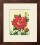 Red Hibiscus Poster by Ted Mundorff