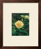 Blooming Cereus with Full Moon Posters by Ted Mundorff