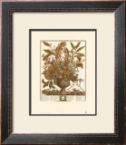 Twelve Months of Flowers, 1730, January Print by Robert Furber