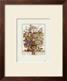 Twelve Months of Flowers, 1730, July Prints by Robert Furber