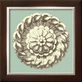 Celadon and Mocha Rosette IV Prints