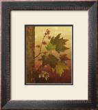 Maple Leaves Poster by Jillian Jeffrey