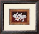 White Orchids Prints by Vivien Rhyan