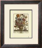 Twelve Months of Flowers, 1730, March Prints by Robert Furber