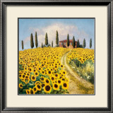 Sunflowers I Prints by Barbara Carter