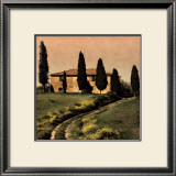 Tuscan Farmhouse Art by Elizabeth Carmel