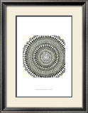Abstract Rosette III Prints by Chariklia Zarris