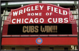 Cubs Win! Photo