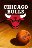 Chicago Bulls Prints
