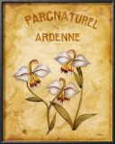 Parcnaturel II Poster by Loretta Linza