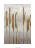 Reeds and Leaves II Premium Giclee Print by Jennifer Goldberger