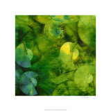 Sharon Gordon - Nautilus in Green II Speciální digitálně vytištěná reprodukce