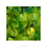 Sharon Gordon - Nautilus in Green I Speciální digitálně vytištěná reprodukce