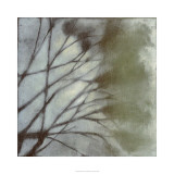 Diffuse Branches II Limited Edition by Jennifer Goldberger