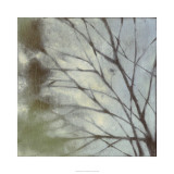 Diffuse Branches I Limited Edition by Jennifer Goldberger