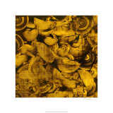 Nautilus in Gold I Limited Edition by Sharon Gordon
