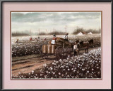 Cotton Pickers Posters