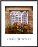 Yorkshire Blooms Prints by Dennis Barloga