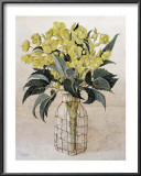 Hellebore in Wire Bottle Prints