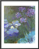 Water Lilies and Agapanthus Poster by Claude Monet