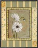 Daisies Prints by Pamela Desgrosellier