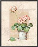 Geranium Posters by T. C. Chiu