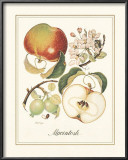 Macintosh Prints by Nan Wiggins