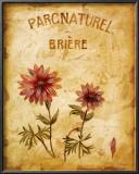 Parcnaturel I Prints by Loretta Linza