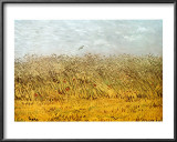 The Wheat Field Art by Vincent van Gogh