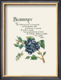 Blueberry Prints by G. Phillips