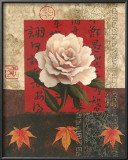 White Chinese Rose Prints by T. C. Chiu