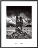 Stumped Prints by Thomas Barbey