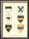 Coat of Arms III Art by  Catton